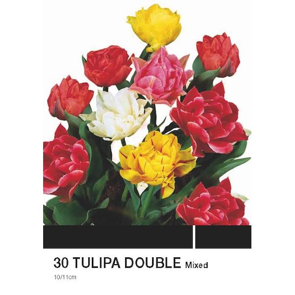 DOBLE MISTURA 30